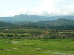 rice paddies and mountains