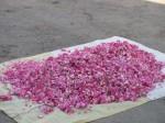 Rose petals for sale in a mountain village near Tabriz